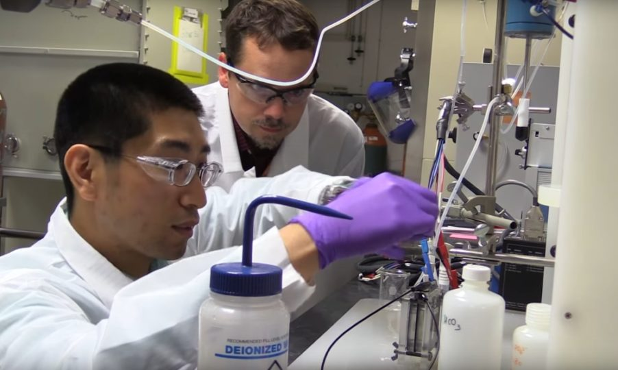 המדענים במהלך הניסוי